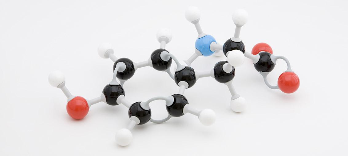 Aminokisline