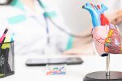 Srčno-žilne bolezni